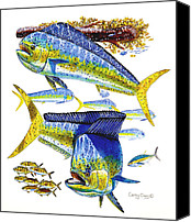 Guy Harvey Canvas Prints - Dolphin in Weedline Canvas Print by Carey Chen