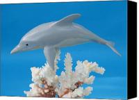 Woodcarving Sculpture Canvas Prints - Dolphin on Coral Canvas Print by Jack Murphy