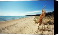 Door County Canvas Prints - Door County Beach Canvas Print by Ty Helbach