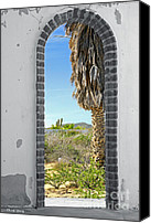 Old Abandoned House Canvas Prints - Doorway to the Desert Canvas Print by Cheryl Young