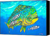 Daniel Jean-baptiste Canvas Prints - Dorado and Pilot Fish Canvas Print by Daniel Jean-Baptiste