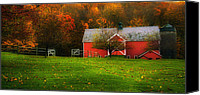 Country Scenes Photo Canvas Prints - Dorsett Vermont-Red Barn autumn Canvas Print by Thomas Schoeller