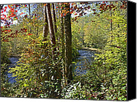 Autumn Scenes Canvas Prints - Double Creek Canvas Print by Larry Bishop