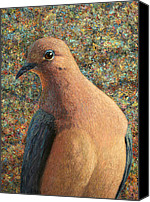 Dove Canvas Prints - Dove Canvas Print by James W Johnson