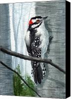 Woodpecker Canvas Prints - Downey Woodpecker Canvas Print by Sean Seal