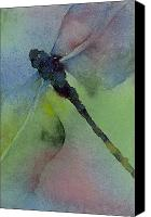 Insects Painting Canvas Prints - Dragonfly in Flight Canvas Print by Gladys Folkers