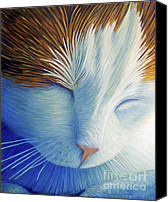 Feline  Canvas Prints - Dream Within A Dream Canvas Print by Brian  Commerford