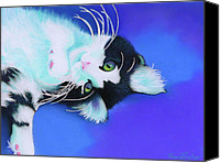 Cats Pastels Canvas Prints - Dreamer Canvas Print by Tracy L Teeter