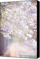 Pink Flower Branch Canvas Prints - Dreaming of Spring Canvas Print by Jenny Rainbow