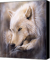 White Canvas Prints - Dreamscape - Wolf Canvas Print by Sandi Baker