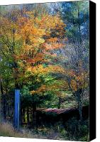 Virginia Canvas Prints - Dreamy Fall Scene Canvas Print by Teresa Mucha