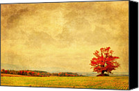 Autumn Scenes Canvas Prints - Dressed In Red Canvas Print by Emily Stauring