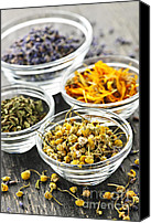 Bowls Canvas Prints - Dried medicinal herbs Canvas Print by Elena Elisseeva