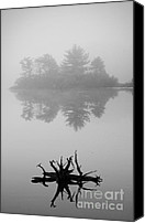 Silver Canvas Prints - Driftwood and Lake Canvas Print by Dave Gordon