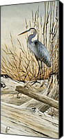Heron  By James Williamson Painting Canvas Prints - Driftwood Splendor Canvas Print by James Williamson