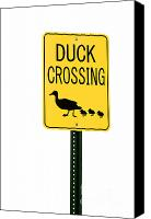 Bird Family Canvas Prints - Duck Crossing sign Canvas Print by Blink Images