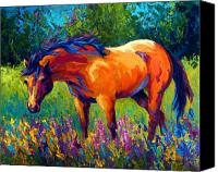 Vivid Canvas Prints - Dun Mare Canvas Print by Marion Rose