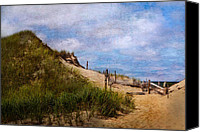 Impressionism Photo Canvas Prints - Dune Canvas Print by Bill  Wakeley