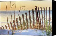 Sand Fences Canvas Prints - Dune Fence on the Beach at Sunset Canvas Print by Elizabeth Spencer