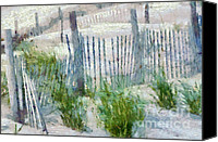 Sand Fences Canvas Prints - Dune Fences at Cape Hatteras National Seashore Canvas Print by Anne Kitzman