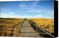 Barren Canvas Prints - Dune Walkway Canvas Print by Carlos Caetano