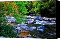 Rushing Mountain Stream Canvas Prints - Early Autumn along Williams River Canvas Print by Thomas R Fletcher