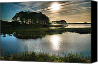 Chincoteague Canvas Prints - Early Morning On Beach Drive II Canvas Print by Steven Ainsworth