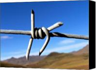 Barbed Wire Fences Digital Art Canvas Prints - Earthly Boundaries Canvas Print by Vijay Sharon Govender