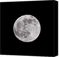 Full Moon Canvas Prints - Earths Moon Canvas Print by Steve Gadomski