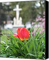 Spring Scenes Canvas Prints - Easter -2012 Canvas Print by Tam Ishmael - Eizman