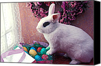 Ribbons Canvas Prints - Easter bunny Canvas Print by Garry Gay