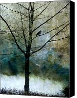 Treescape Canvas Prints - Eastward Canvas Print by Carol Leigh