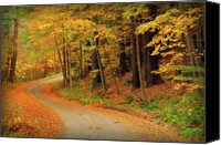 Scenic Roads Canvas Prints - Edition 1 - Country Roads Canvas Print by Thomas Schoeller