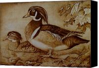 Ducks Pyrography Canvas Prints - Edward and Mae Canvas Print by Jo Schwartz