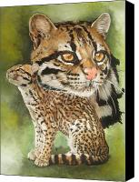 Wildcats Canvas Prints - Efficacious Canvas Print by Barbara Keith