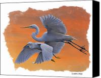 Great Egret Canvas Prints - EGRETS GREAT and SNOWY Canvas Print by Larry Linton