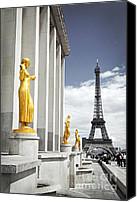 Architecture Photo Canvas Prints - Eiffel tower from Trocadero Canvas Print by Elena Elisseeva