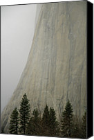  Yosemite Canvas Prints - El Capitan, Yosemite National Park Canvas Print by Andr Leopold