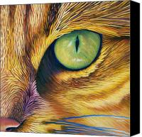 Animals Tapestries Textiles Canvas Prints - El Gato Canvas Print by Brian  Commerford