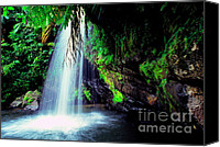 Lush Vegetation Canvas Prints - El Yunque Waterfall Canvas Print by Thomas R Fletcher