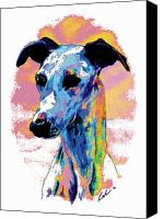 Whippet Canvas Prints - Electric Whippet Canvas Print by Kathleen Sepulveda