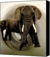 Elephant Pastels Canvas Prints - Elephant Chat  Canvas Print by Colette Hera  Guggenheim