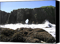 Ocean Energy Canvas Prints - Elephant Rock 2 Canvas Print by Will Borden