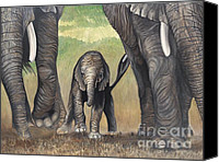 Baby Elephant Canvas Prints - Elephant Trio Canvas Print by Patty Vicknair