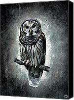 Barn Digital Art Canvas Prints - Elusive Owl Canvas Print by Lourry Legarde