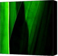 Natural Abstract Canvas Prints - Emerald Canvas Print by James Temple