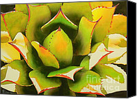 Desert Canvas Prints - Emergence Canvas Print by Robert Hooper