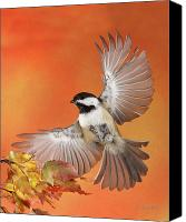 Birds In Flight Canvas Prints - Emergency Landing Canvas Print by Gerry Sibell