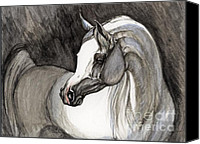 Arabian Horse Drawings Canvas Prints - Emerging From The Darkness Canvas Print by Angel  Tarantella