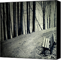 Dirt Road Canvas Prints - Empty Bench Canvas Print by Dirk Wstenhagen Imagery